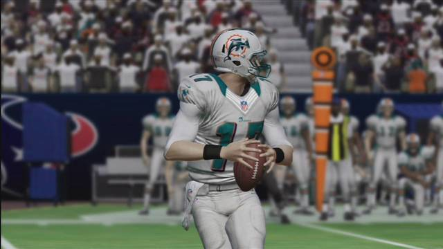 madden 25 dolphins